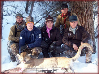 Colorado mountain lion hunting