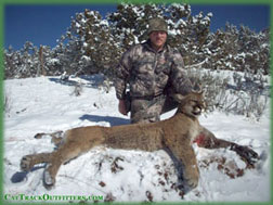 Western Colorado guided mountain lion archery hunt - Colorado Bow Hunter Landon Bradbury with his tom 2015